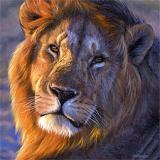 Lev-Lion
