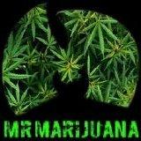MrMarijuana